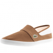Lacoste Marice Plimsoll Brown