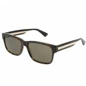 Product Image for Gucci GG0340S 008 Sunglasses Brown
