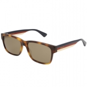 Product Image for Gucci GG0340S 010 Sunglasses Brown